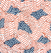 USA Wavy Flag Bandanna